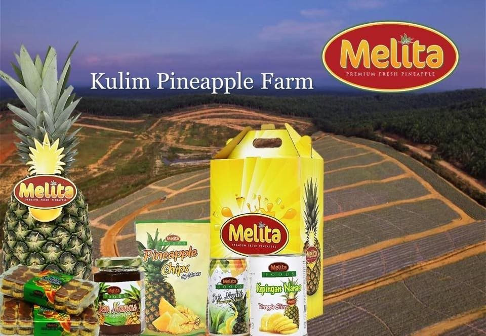 Kulim-Pineapple-Farm.jpg